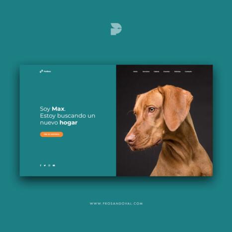 Diseño Página web para fundación de perros Patikas