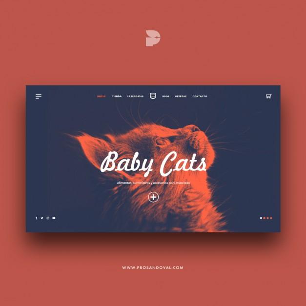 Diseño tienda online para gatos prosandoval ecuador